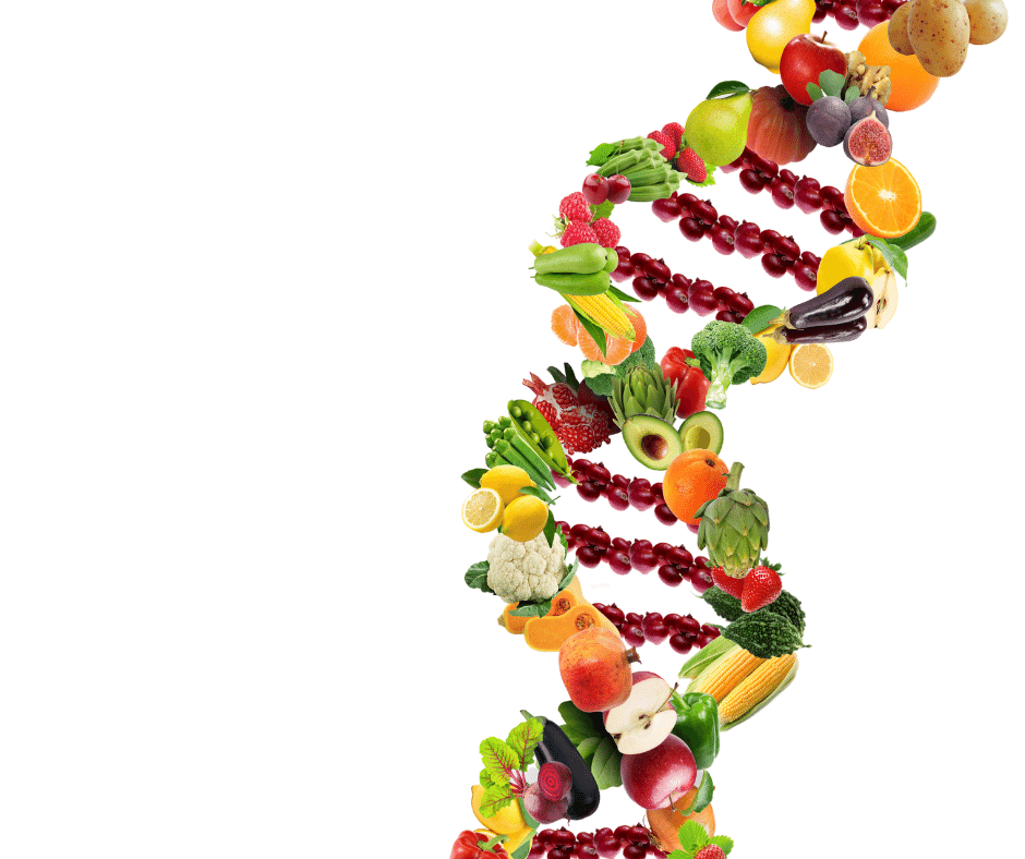 healthy-diet-dna